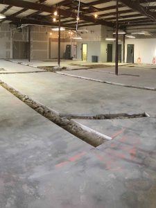 All Creatures Vet Hospital concrete floor